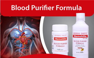 Blood purifier
